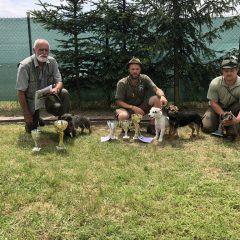 Zkoušky z norování – Mohelno 2018-06-09